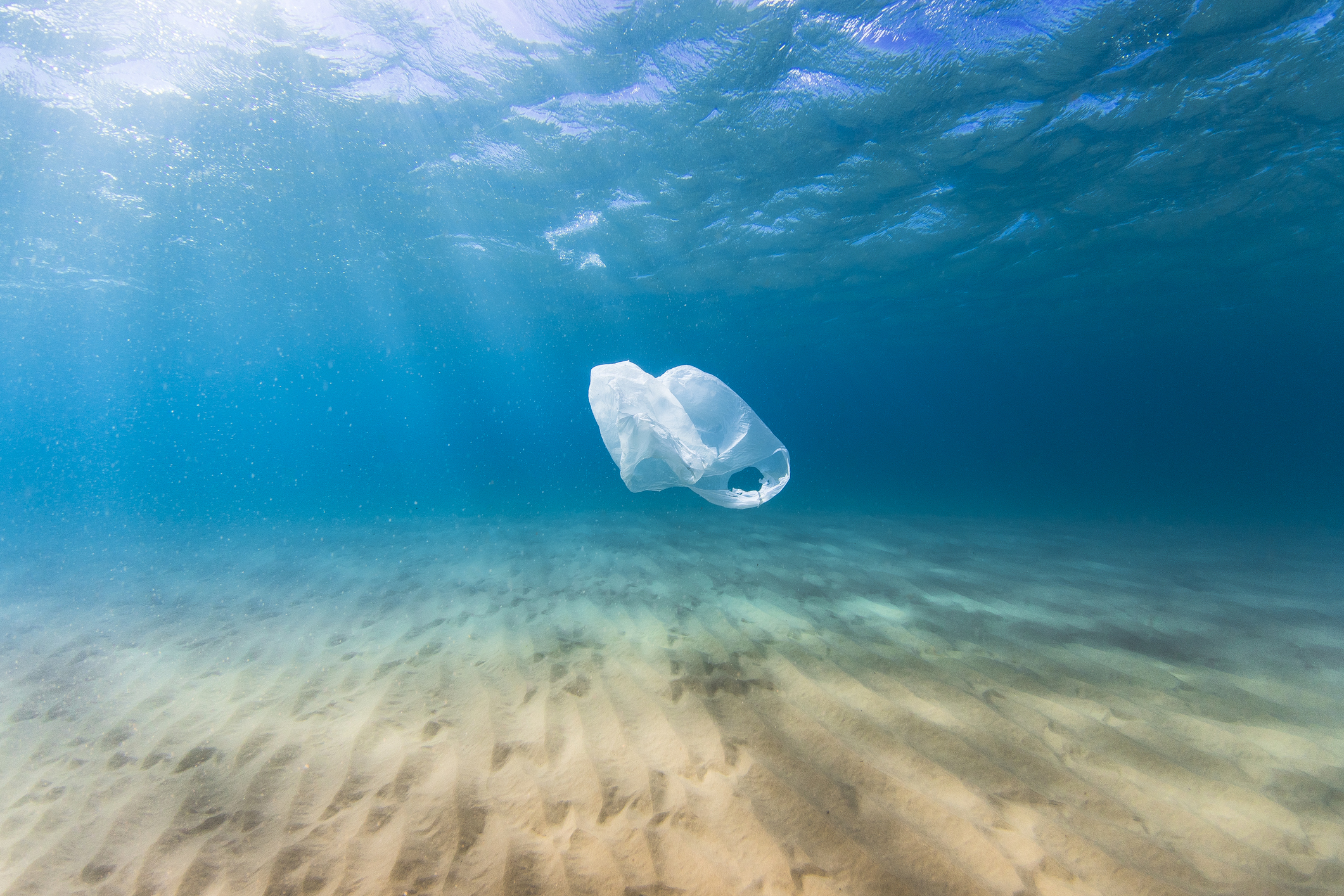 Featured image for Reducing plastic waste: why choosing the right material isn't as simple as you think